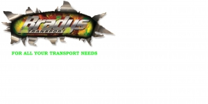 NEW Bradys Transport Logo.jpg STUBBIE